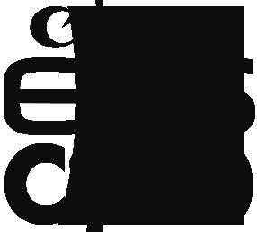 c300_logo_black