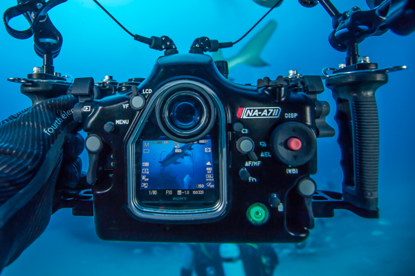 Join told Underwater amateur camera equipment